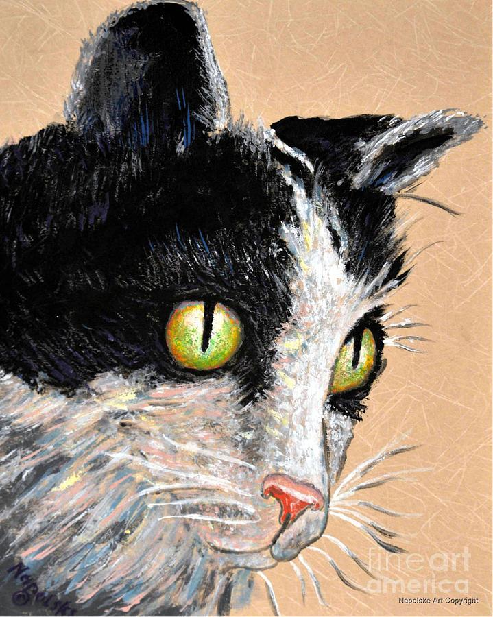 Tuxedo Cat Face by Barney Napolske