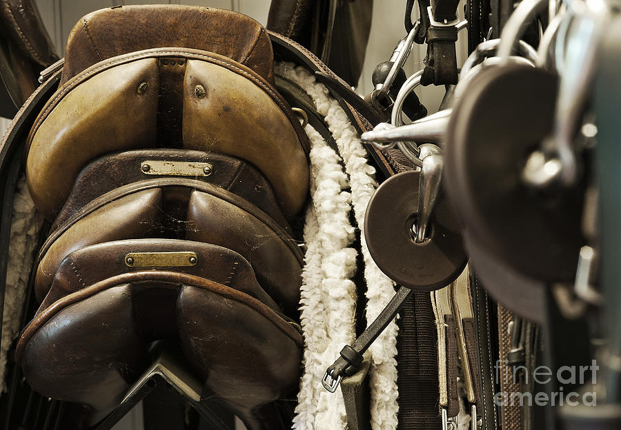 Equipment Photograph - Tac Room Saddles by John Greim