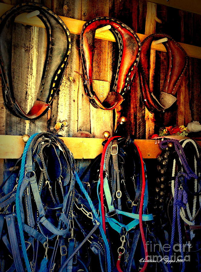 Horses Photograph - Tack Room by Christine Zipps