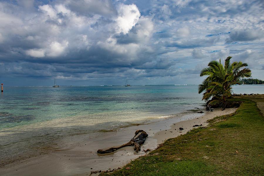 Taha'a Shoreline by Martin Naugher