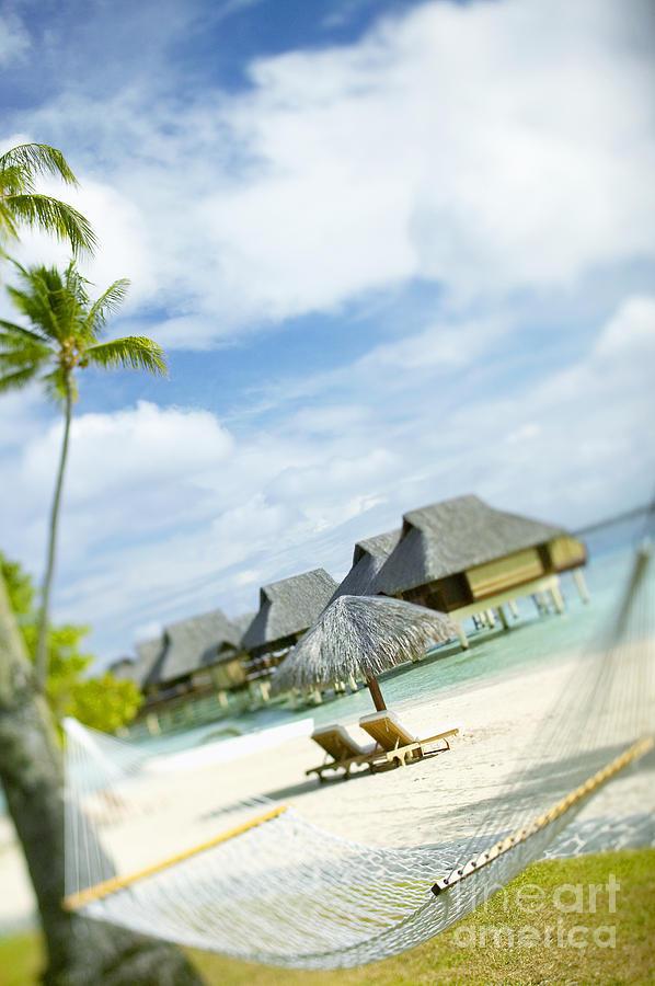 10-pfs0158 Photograph - Tahiti, Bora Bora by Kyle Rothenborg - Printscapes