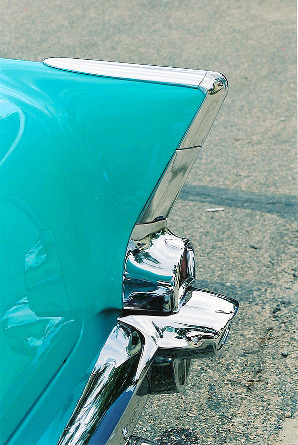 Tail Fin Photograph - Tail Fin by Lauri Novak