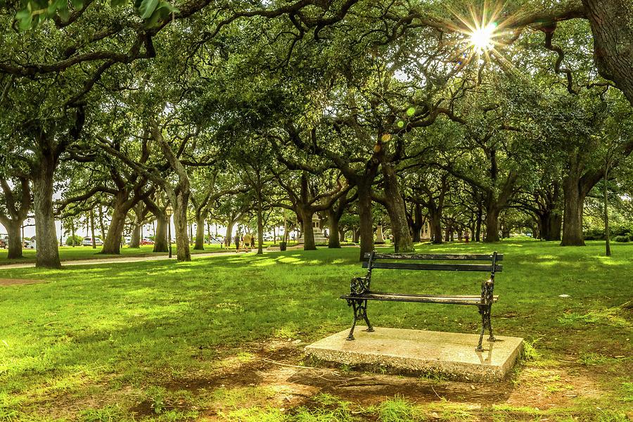 Park Photograph - Take A Rest by Dana Foreman