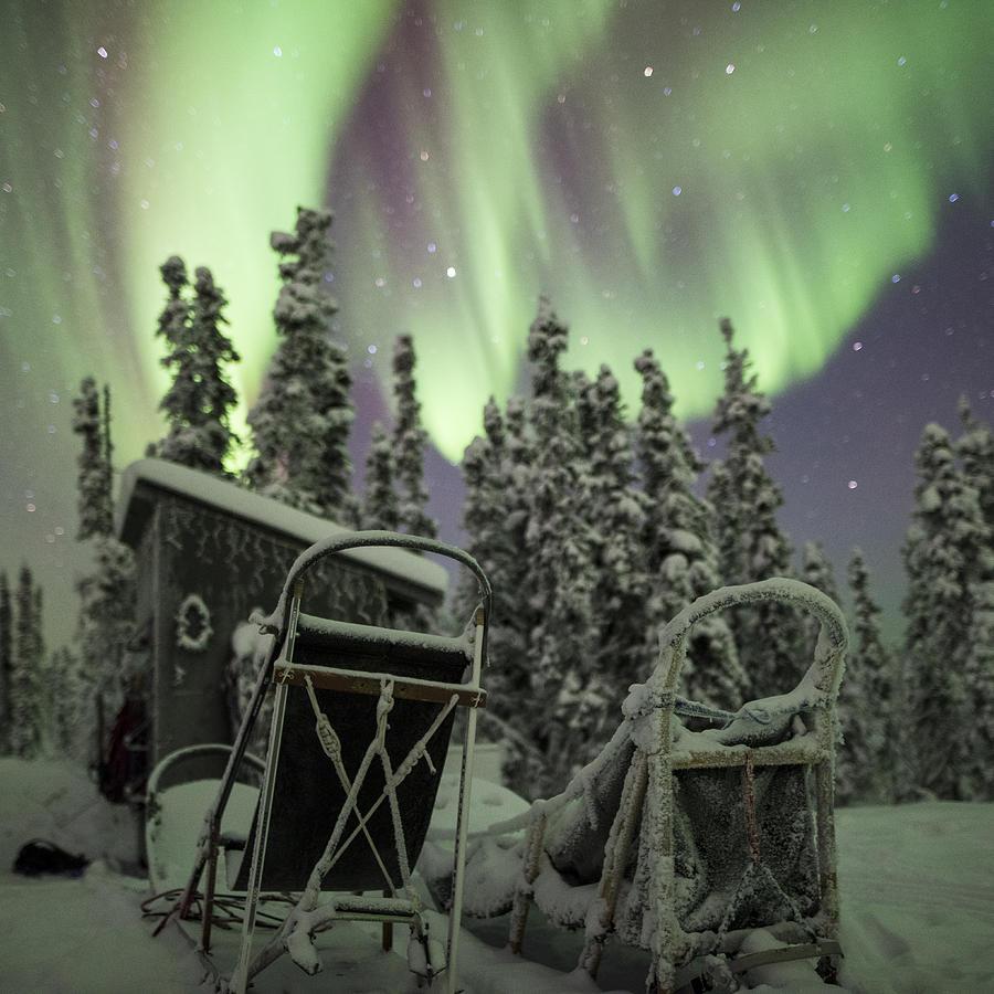 Alaska Photograph - Take A Seat For The Aurora Custom 1x1 by Ian Johnson