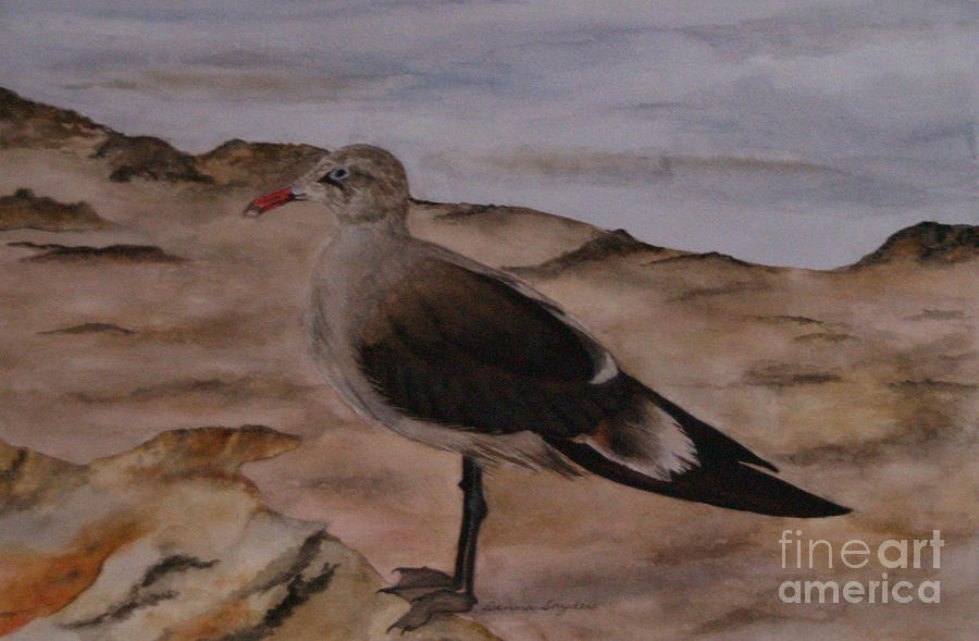 Sea Gull Painting - Taking A Break by Donna Snyder