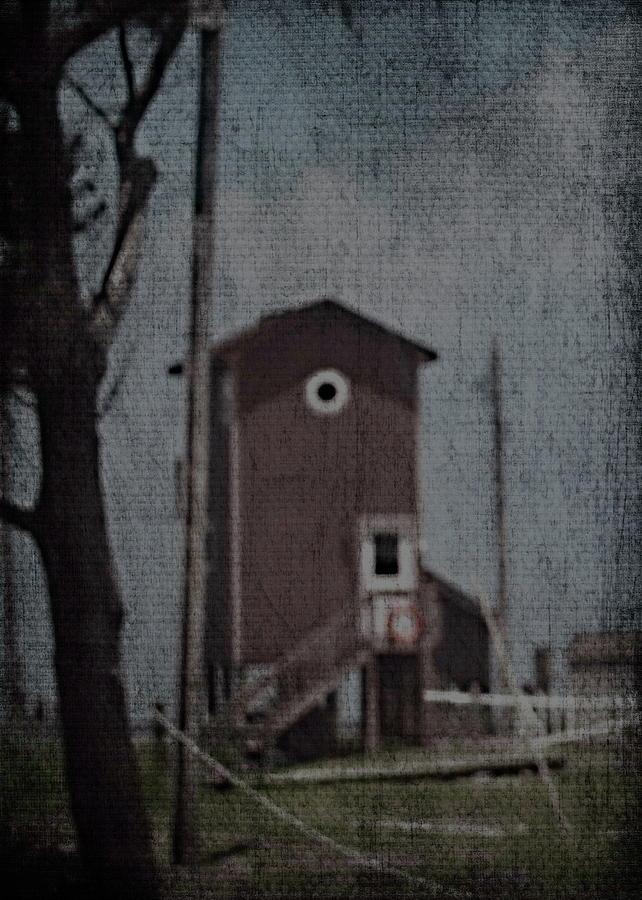 Beach House Photograph - Tall Little Stilt House 3 by Cathy Lindsey