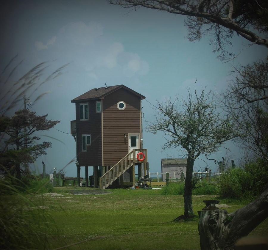 Beach House Photograph - Tall Little Stilt House, by Cathy Lindsey