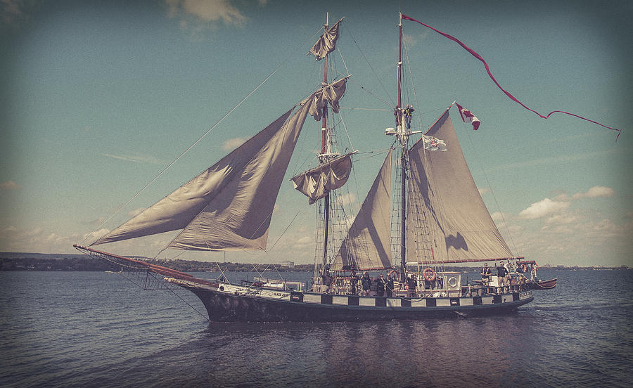Tall Ship - 4 by Will Bailey