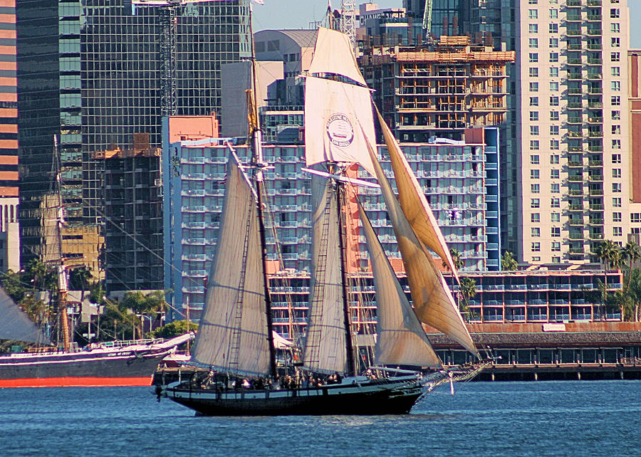Boats Photograph - Tall Ship In San Diego  by Bill Mollet
