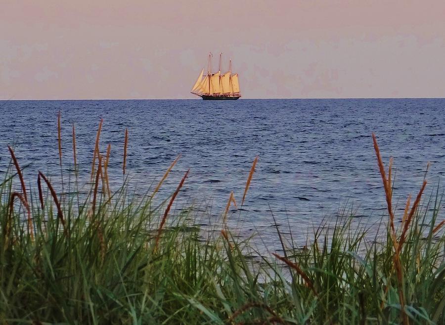 Ships Photograph - Tall Ship Under Sail by Linda McAlpine