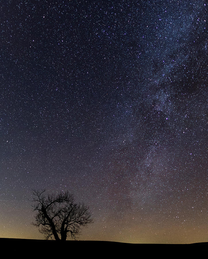 Tallgrass Photograph - Tallgrass Prairie Preserve No. 6 Winter Milky Way by Jon Friesen