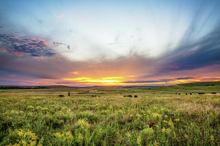 Prairie Photograph - Tallgrass Prairie - Incredible Sunset Over Open Plains in Oklahoma by Southern Plains Photography