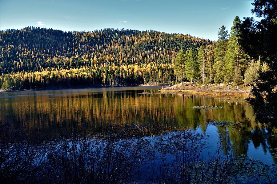 Lakes Photograph - Tamarack Reflections by Mike Helland