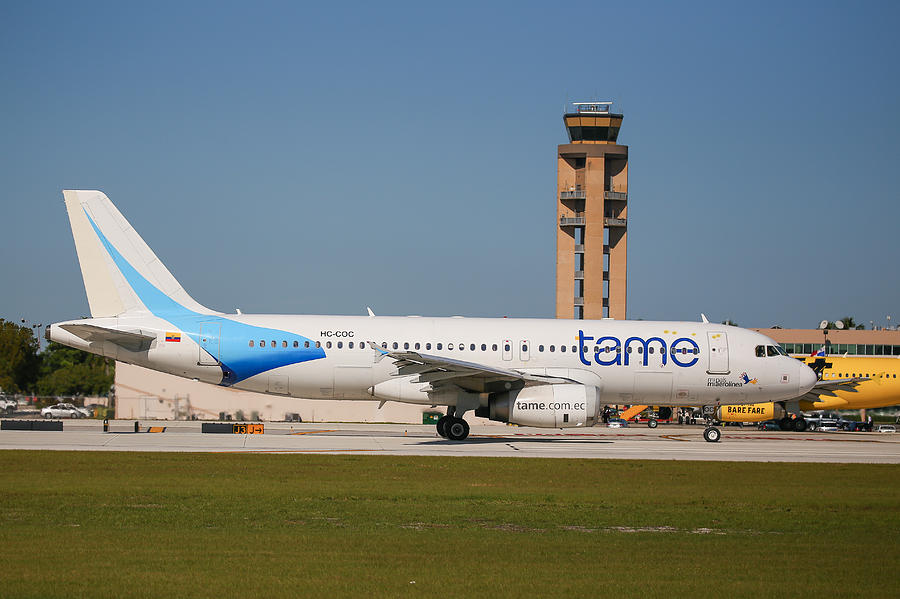 Tame Airline Photograph by Dart and Suze Humeston