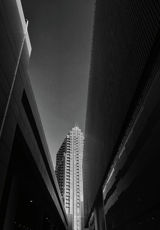 Tampa Photograph - Tampa, Fl by Tara Miller