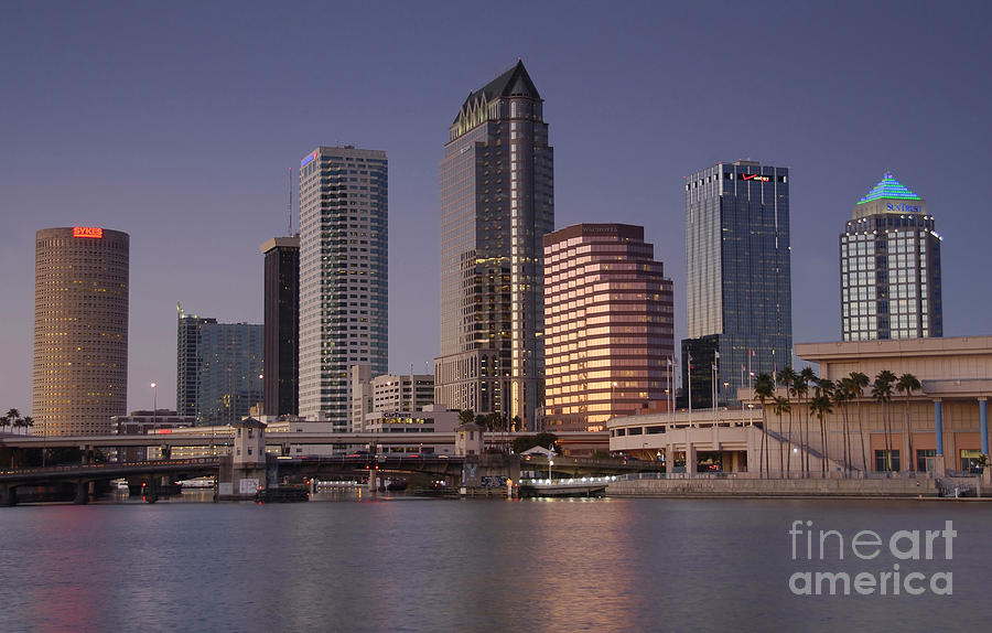 City Photograph - Tampa Florida  by David Lee Thompson