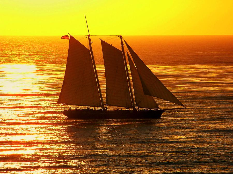 Sunsets Photograph - Tangerine Sails by Karen Wiles