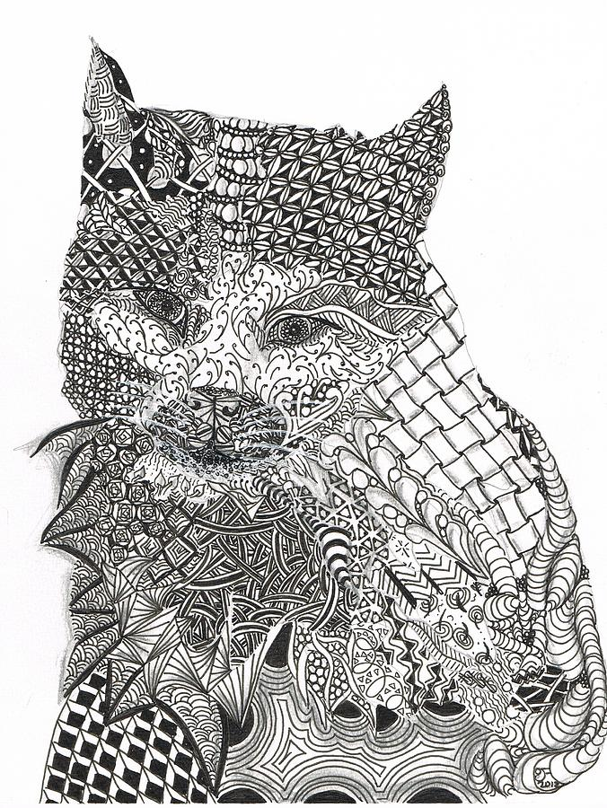Zentangle Drawing - Tangled Cat by Dianne Ferrer