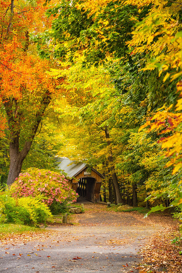 Fall Photograph - Tannery Hill Covered Bridge by Robert Clifford