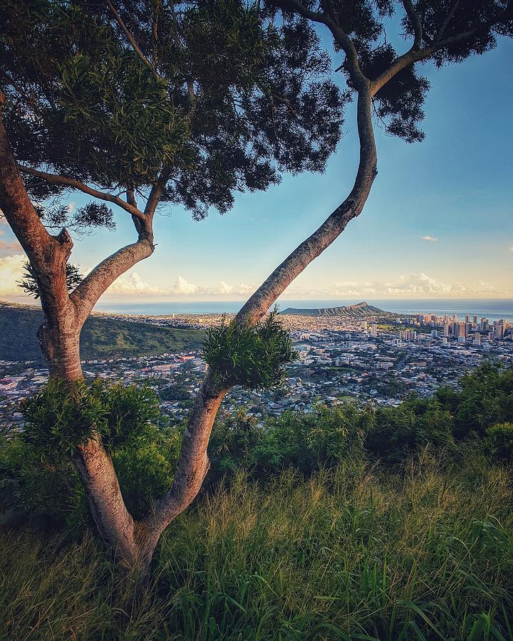 Tantalus Lookout Photograph - Tantalus Views by Jason Keinigs