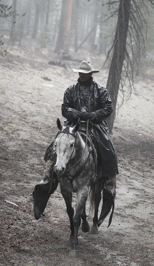 Tapadero Cowboy by Diane Bohna