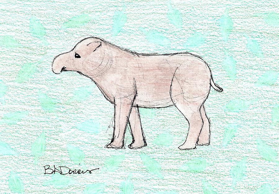 Tapir by Brittany Dorris
