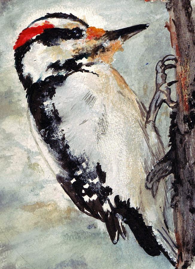 Hairy Woodpecker Painting - Tappity Tap by Debra Sandstrom