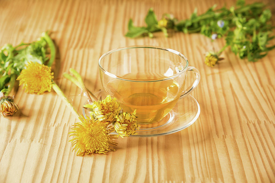 Taraxacum Tisane by Traven Milovich