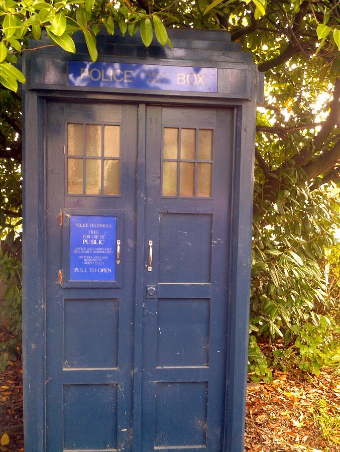 Tardis Photograph - Tardis by Julie Butterworth