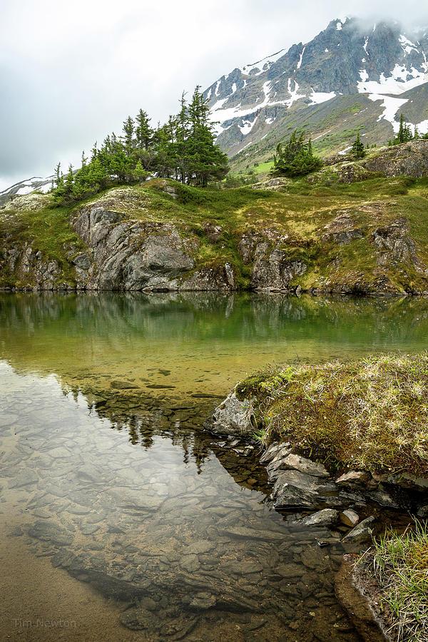 Alaska Photograph - Tarns Of Nagoon 172 by Tim Newton
