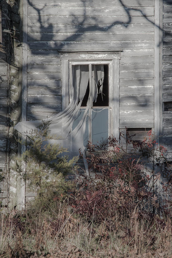 Tattered Curtain by Cyndi Goetcheus Sarfan