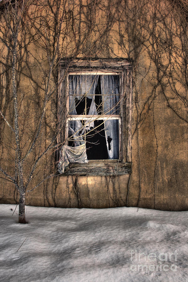 Old Photograph - Tattered Curtain In Snow 2010 by Sari Sauls