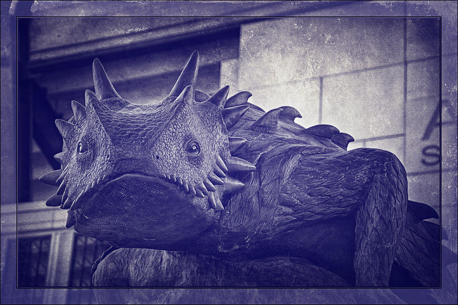 Joan Carroll Photograph - Tcu Horned Frog Purple by Joan Carroll