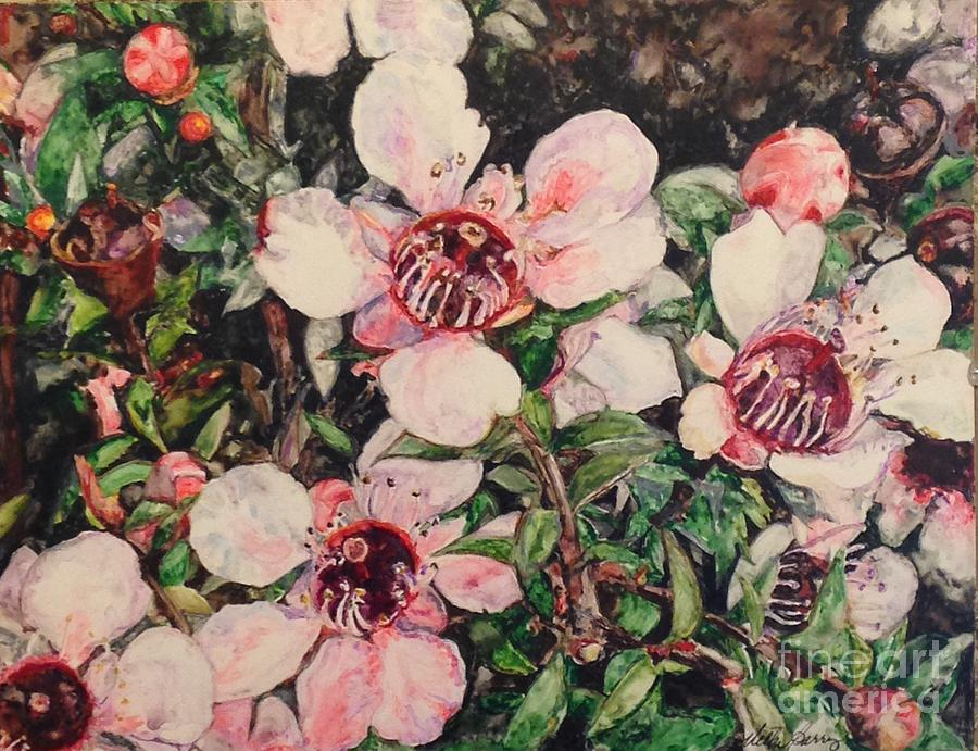 Tea Tree Blossoms by Vicki Baun Barry