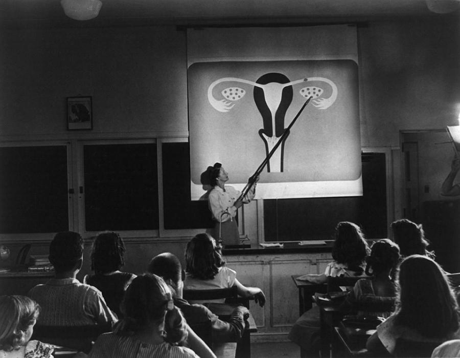 History Photograph - Teacher Points To A Diagram Of Female by Everett