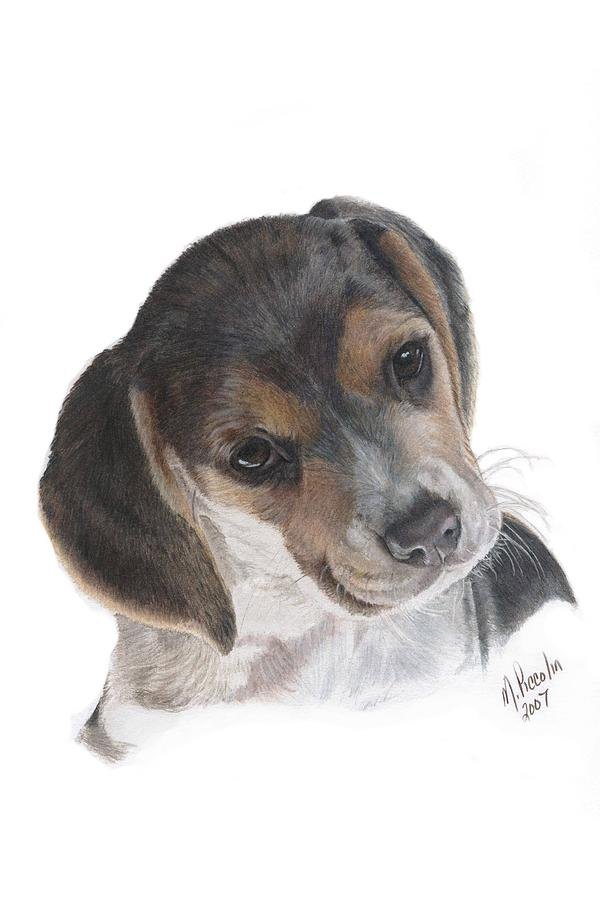 Dogs Painting - Teagan by Marlene Piccolin