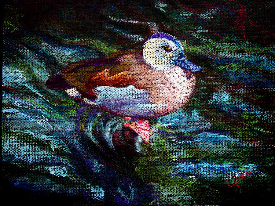 Teal Duck Painting - Teal Duck Of Naples by Laurie Paci