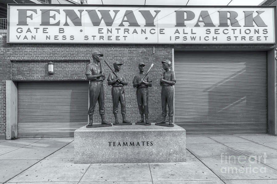 America Photograph - Teammates II by Clarence Holmes