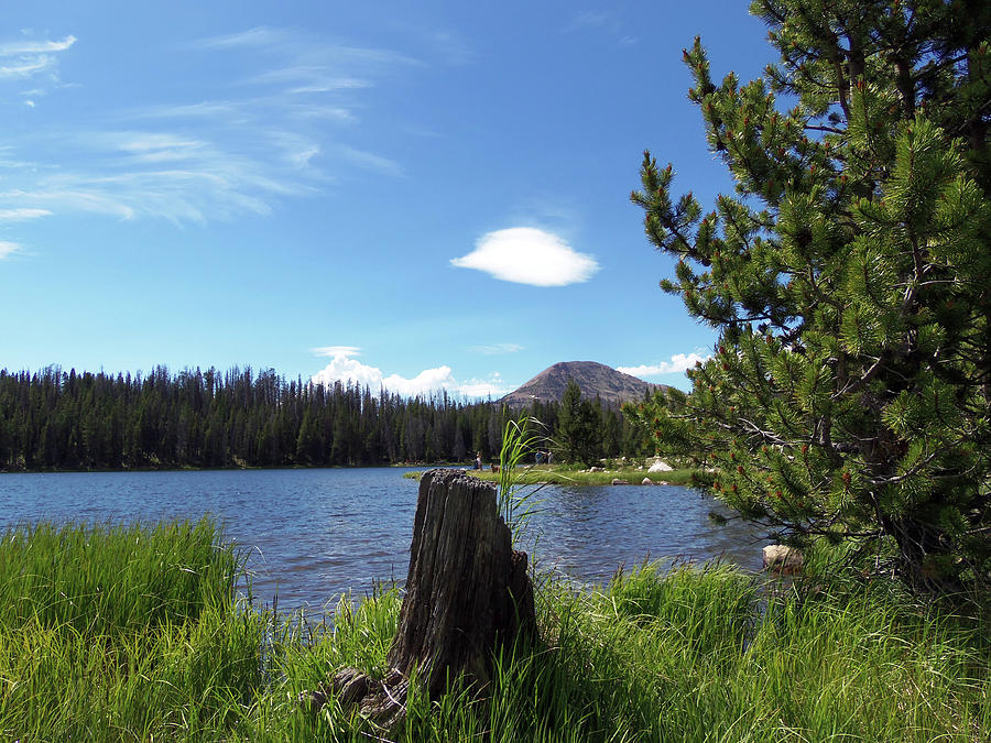 Utah Photograph - Teapot Lake by Julie Tanner