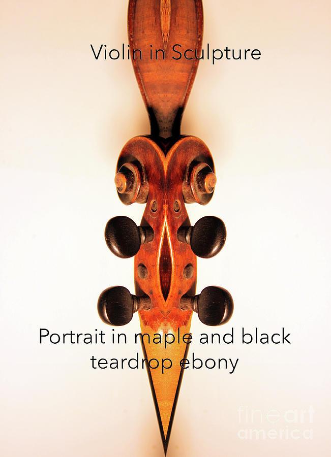 Violin Photograph - Teardrop Ebony  by Steven Digman
