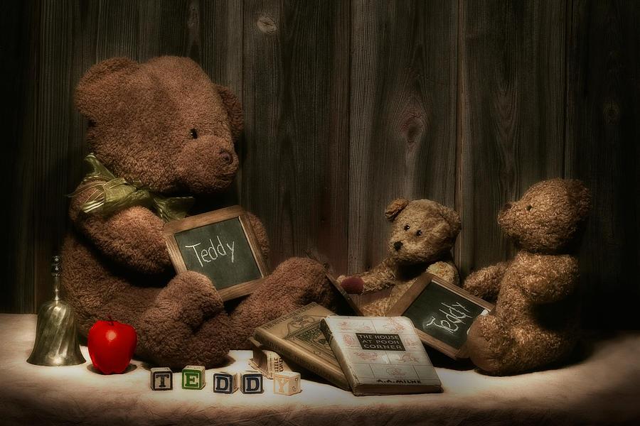 Animal Photograph - Teddy Bear School by Tom Mc Nemar