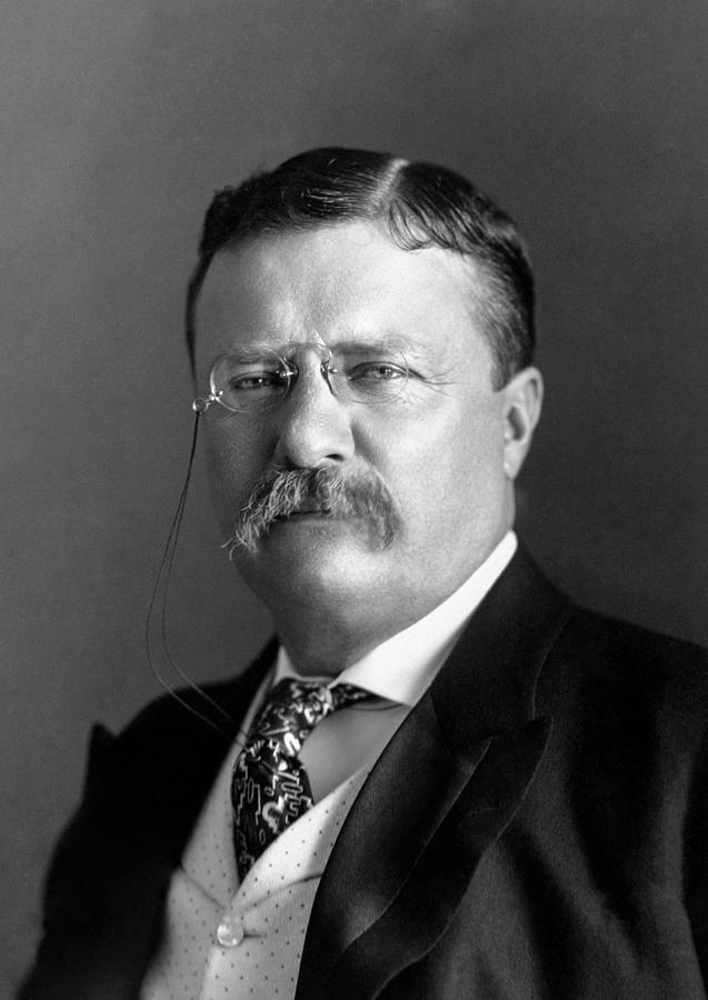 Theodore Roosevelt Photograph - Teddy Roosevelt Portrait - 1904 by War Is Hell Store