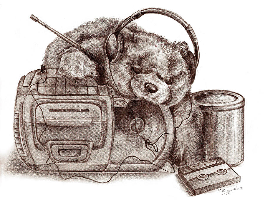 Teen Drawing - Teenage Bear by Sipporah Art and Illustration