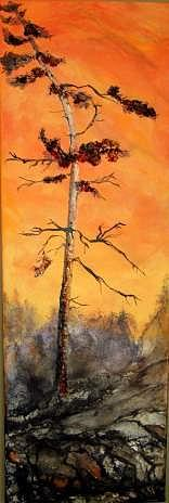 Pine Painting - Temagami Pine by Anne-D Mejaki - Art About You productions