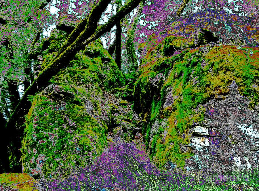 Green Photograph - Temple Of Joy by JoAnn SkyWatcher