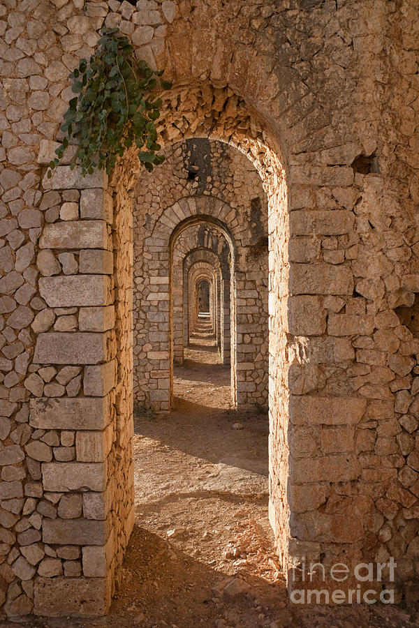 Arches Photograph - Temple Of Jupiter Anxur by Yair Karelic