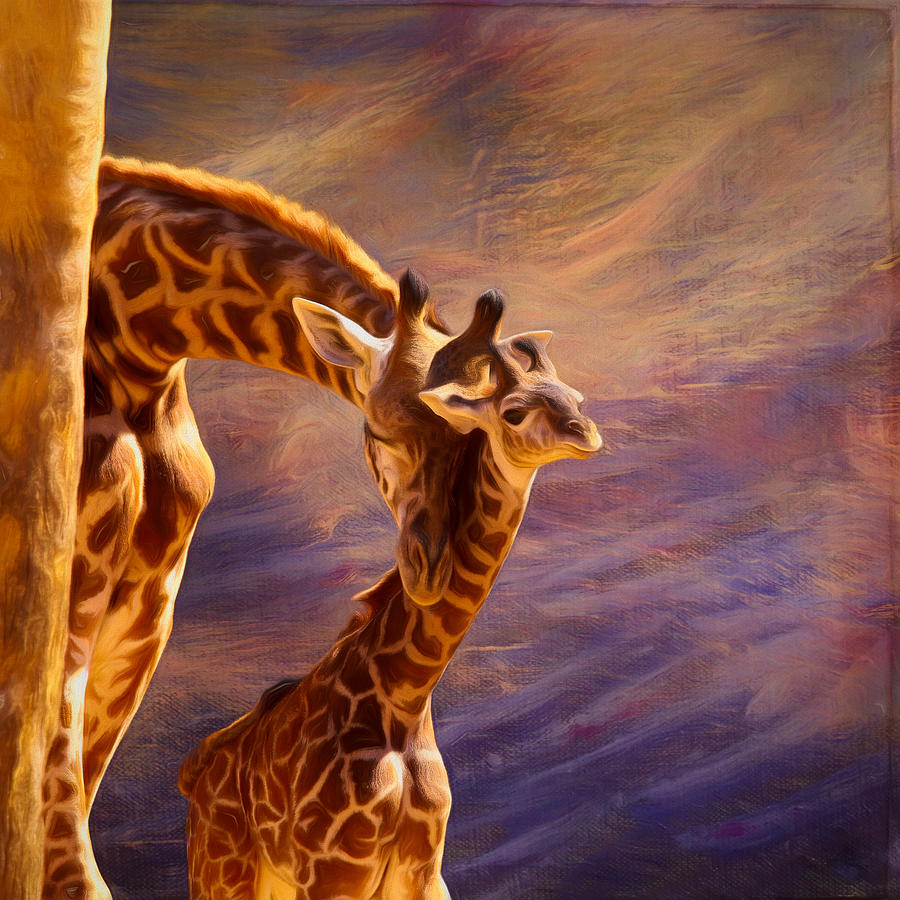 Giraffe Mixed Media - Tenderness Painted by Judy Vincent