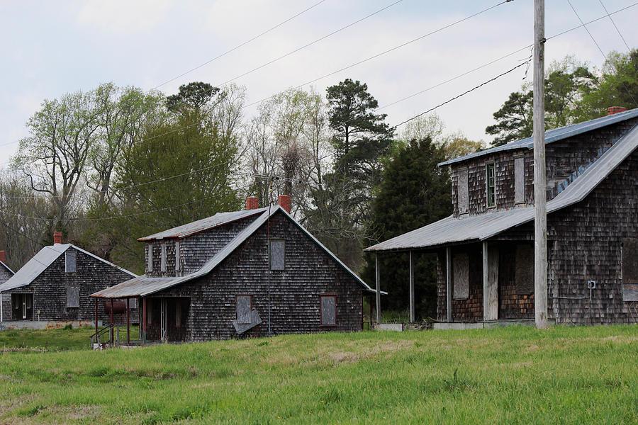 Tenent Houses Photograph