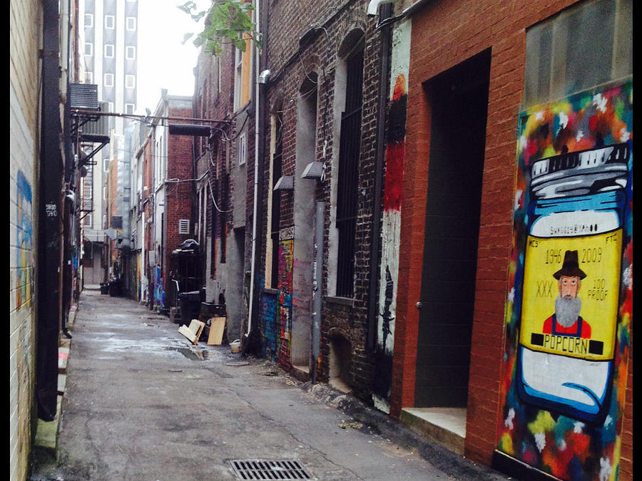 Graffiti Photograph - Tennessee Alley by Joyce Kimble Smith