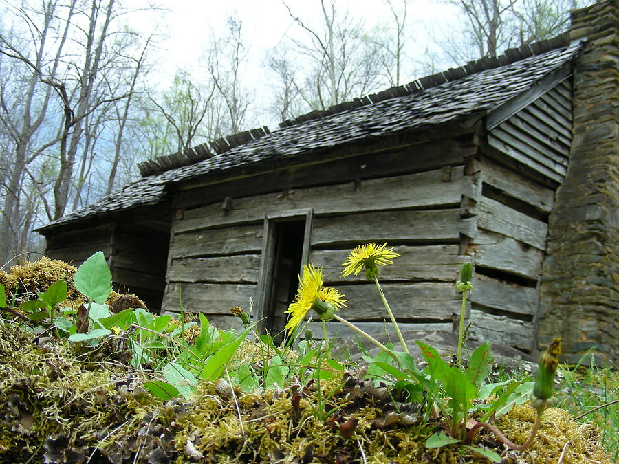 Tennessee Photograph - Tennessee Homestead by Linda Russell